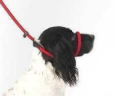 Dog-Field-Figure-8-Anti-Pull-Lead-Halter-Head-Collar-One-Size-Fits-All-Super-Soft-Braided-Nylon-Fitting-Instructions-Included-0-234x194
