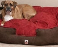 Extra-Large-Dog-Bed-for-Large-Breeds-42in-by-TOA-0-234x189
