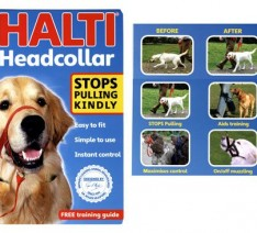 Halti-Head-Collar-Link-for-Dogs-Size-3-Black-16616-0-234x212