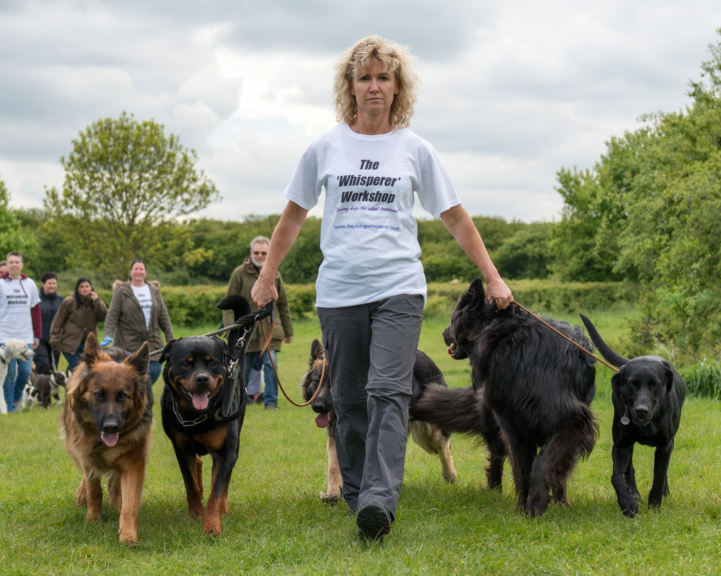 Image Result For Dog Training Classes South London