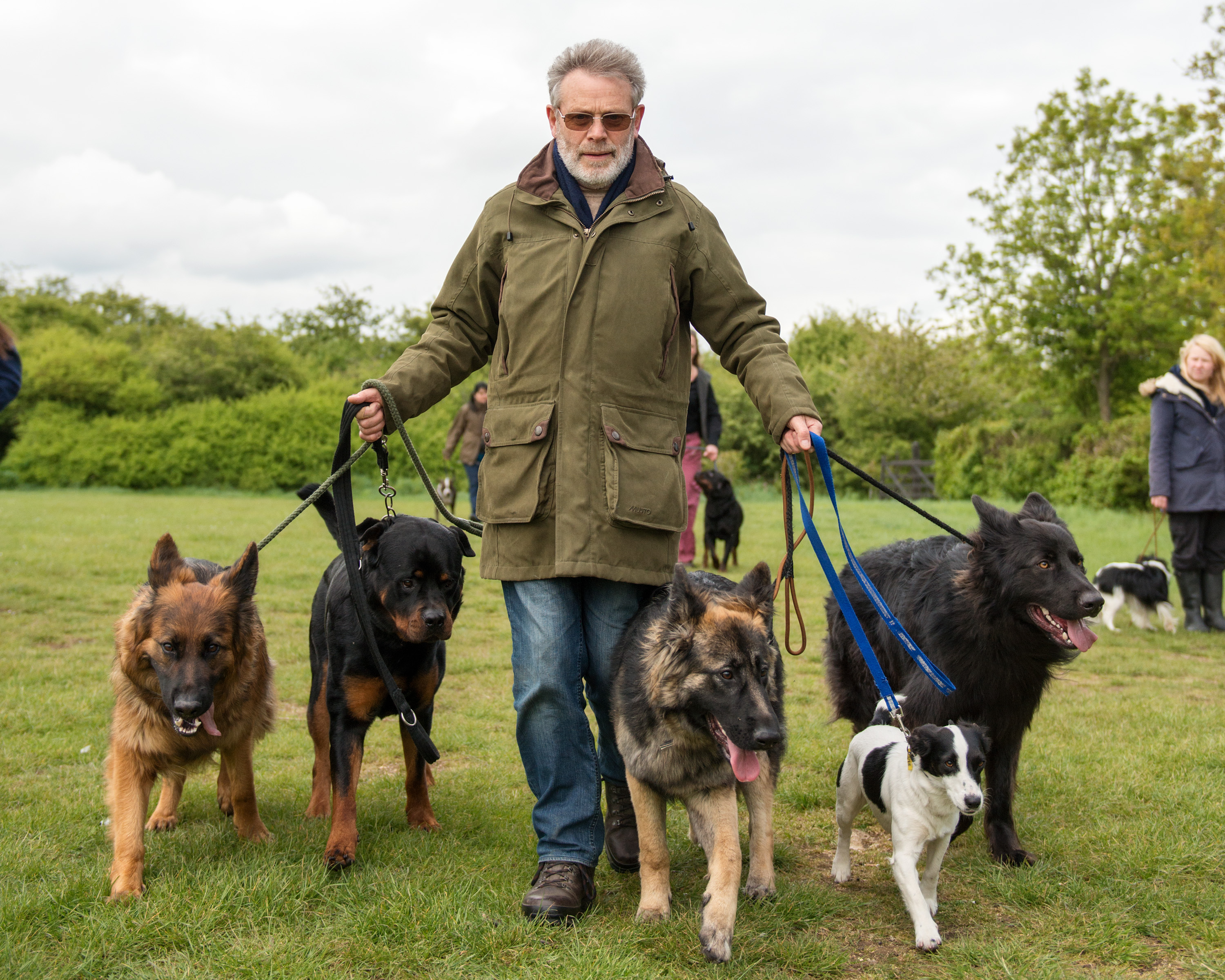 Dog Whisperer Courses Uk