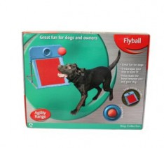 Rosewood-Dog-Agility-Flyball-0-234x212